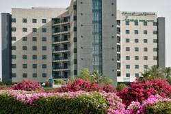 ARABIAN PARK 3*, Дубай, ОАЭ