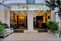 BELLA BEGONIA (EX. HANOI GOLDEN 4)