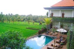 INATA BISMA 3*, Бали, Индонезия